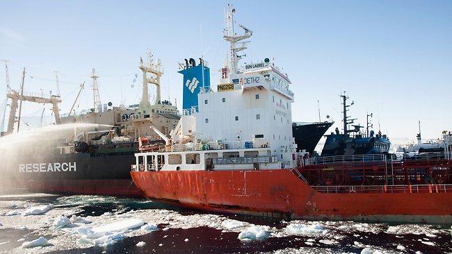 Antarctica Whaling Incident