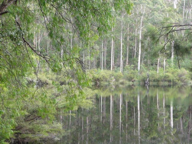 SHANNON NATIONAL PARK Accessible from the South West Highway almost halfway between Manjimup and Walpole, and home to some of the country's most magnificent Karri Forest, Shannon National Park offers a variety of ways to experience its rugged landscape. Spend the day birdwatching, stay overnight in the Shannon Campground or immerse yourself on one of the different walking trails.