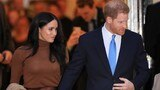 Meghan Markle accuses the palace of 'perpetuating falsehoods'