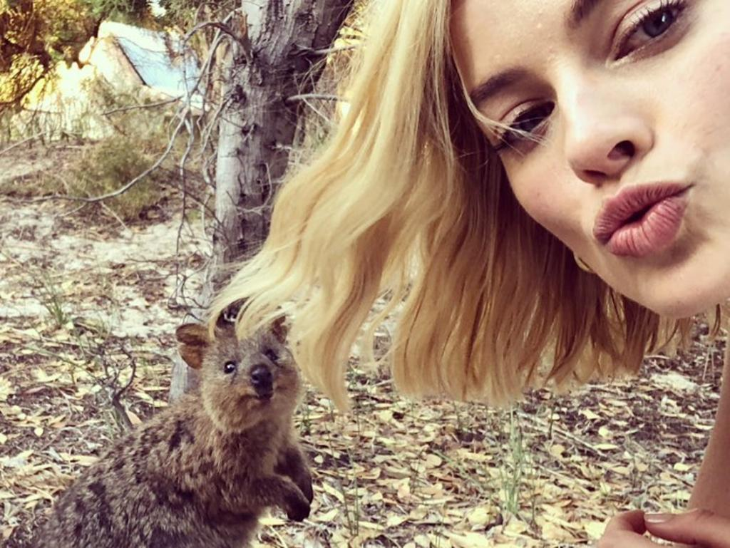 Margot Robbie with a Quokka