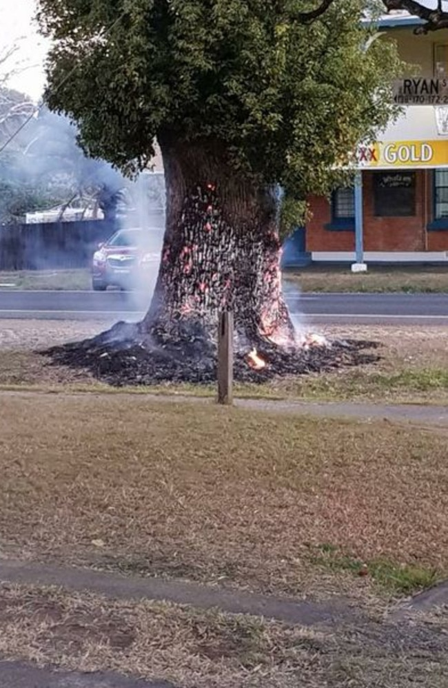 A fire started at the base of a large tree opposite the Royal Hotel in South Grafton on Saturday, 19th August, 2018. Picture: Lucas Ray