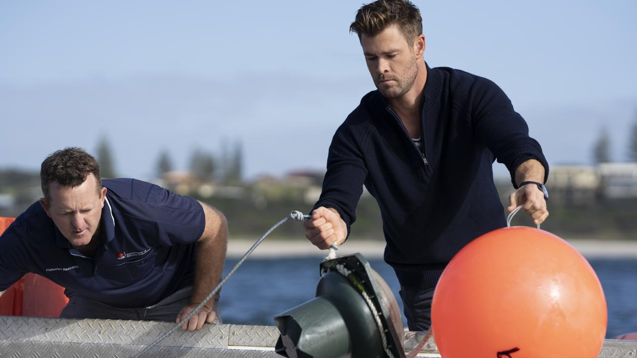 Chris Hemsworth and Paul Butcher bait and release a smart drum line. Picture: National Geographic/Craig Parry