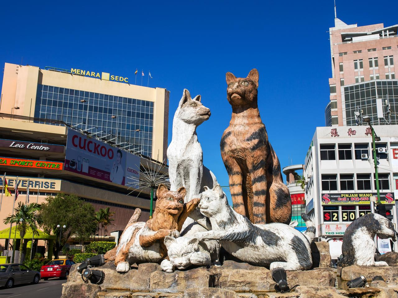 World's best holiday destinations for crazy cat lovers | escape