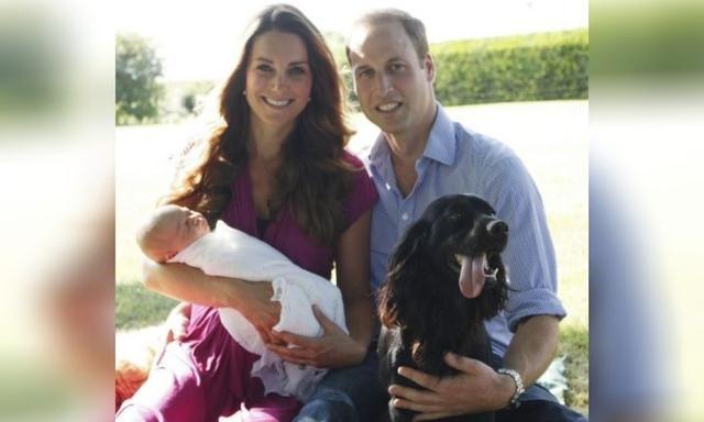 Prince William and Kate Middleton dog lupo