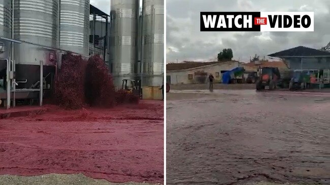 50,000 litres of wine floods Spanish winery