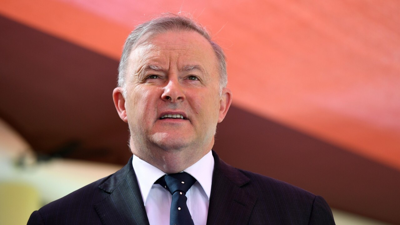 Albanese 'made a big mistake' getting on 'the wrong side' of the China debate