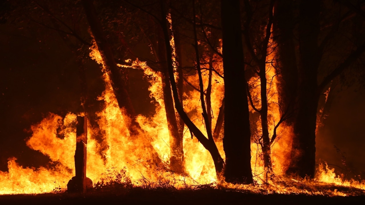 'Red tape' has led to delay in allocation of millions in bushfire donations