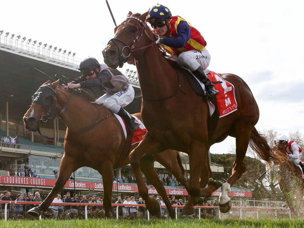 Nature Strip returns to Moonee Valley on Friday night where he was recently successful in the McEwen Stakes. Picture: AAP