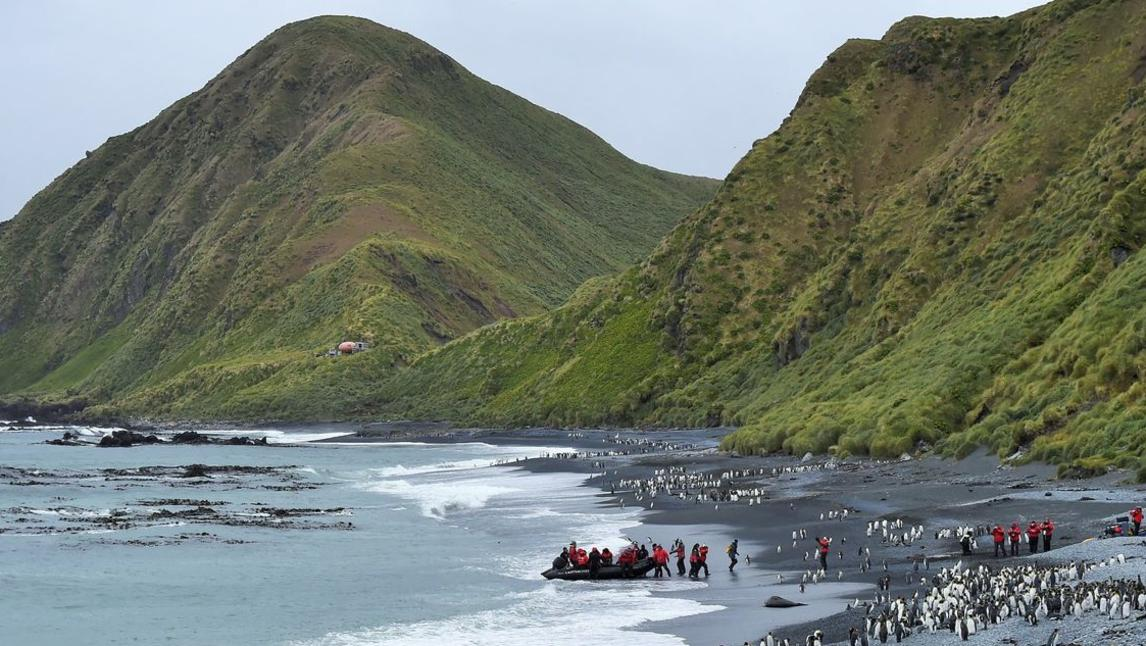 Ponant expedition to the subantarctic Islands. Picture: Nathalie Michel/Margot Sib.