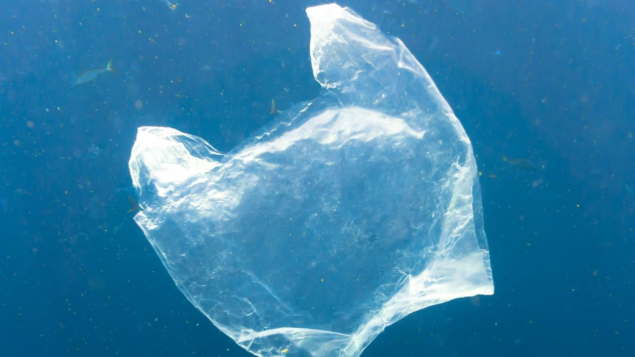 Reducing plastic bag usage will undoubtedly help marine life.