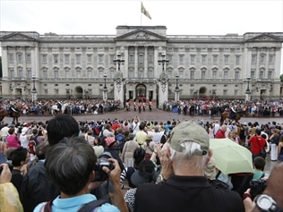 A species of magic mushroom has been discovered growing in the grounds of Buckingham Palace.