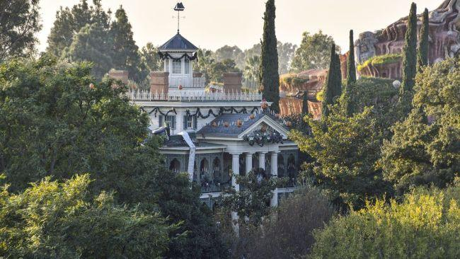 "There may actually be real ashes in Disney's Haunted MansionAccording to one ex-Disneyland employee posting on a Reddit thread under the name Very_Blunt, ""Some people like throwing the ashes of a recently cremated loved one at the Haunted Mansion, and when this happens the ride has to be closed down and hazmat units are called in."""
