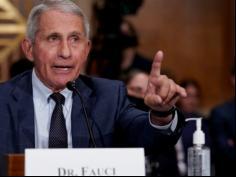 'Saint' Fauci 'demolished' by Senator Rand Paul in 'testy' US Congress exchange