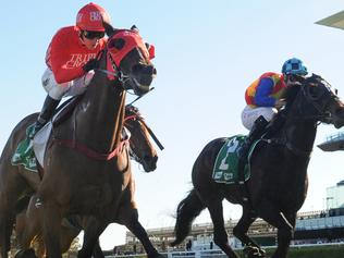 Super Racing | Horse Racing News and Thoroughbreds | The