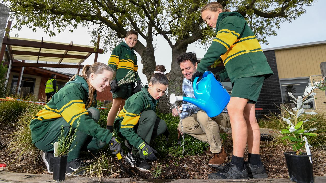 Marcus Mulcahy with Carrum Primary School school leaders Sarah, Tom, Lucy and Billy with trees provided by the Kingston City Council that they'll be planting on National Tree Day. Picture: Penny Stephens