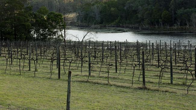 Sydney's secret winery escape