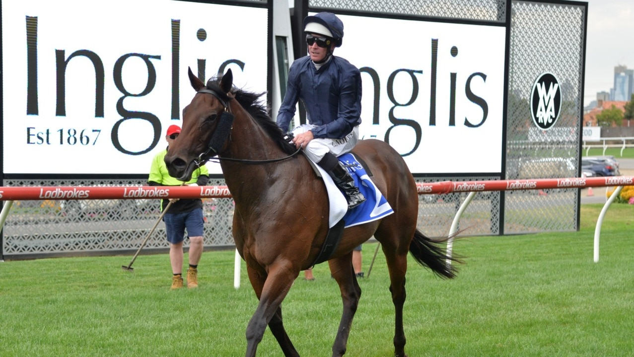 Inglis Yearling Sale coming to a close at Warwick Farm