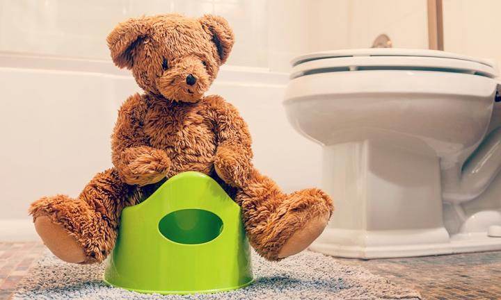 "<strong>6. ROLE PLAY GOING TO THE TOILET.</strong> ""Use dolls, teddy bears or other soft toys with your child to demonstrate the toilet training experience. This way they know that everyone goes to the toilet."""