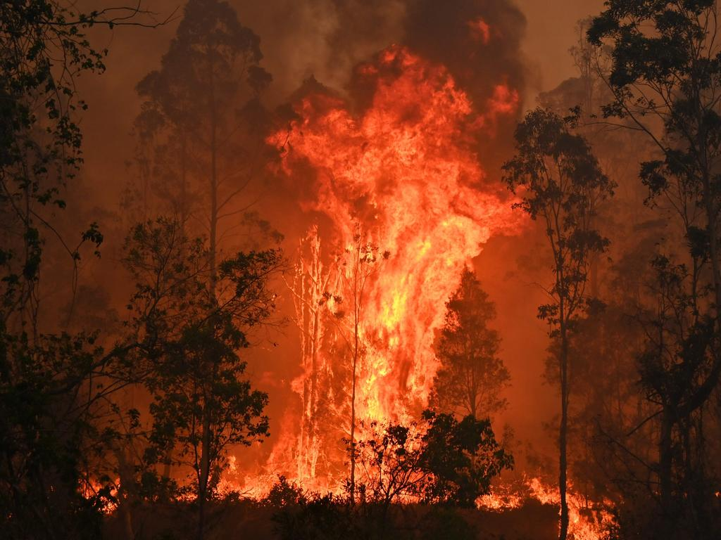 A fire rages in Bobin, 350km north of Sydney. Picture: Peter Parks/AFP