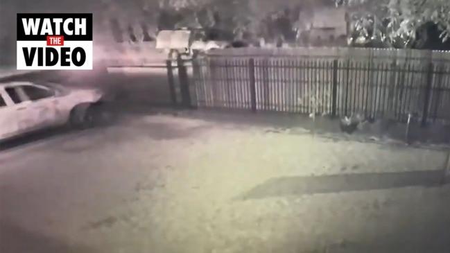 CCTV captures motorcyclist speeding before crash