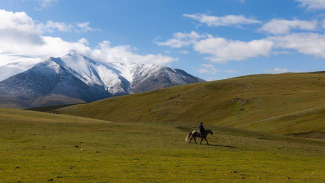 22/29Ride horses on the Mongolian steppes Book yourself in on a tour like no other. On a Mongolia horse tour you will gallop across the vastness of the steppes alongside Mongol herdsman, meeting local families.