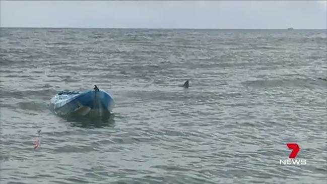Seven News: Girl knocked off kayak by shark