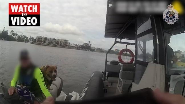 Dog is a pillion passenger on jetski