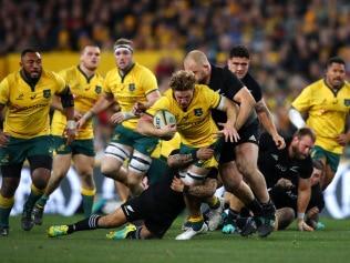 Australian Wallabies v New Zealand All Blacks