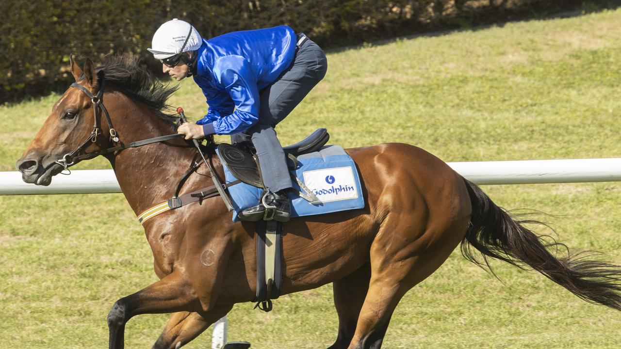 Bivouac gives the Goldophin operation two runners in the world's richest sprint.