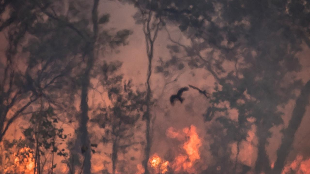 Fires will be so severe in coming years that they will be near impossible to extinguish. Picture: Supplied/Raoul Slater