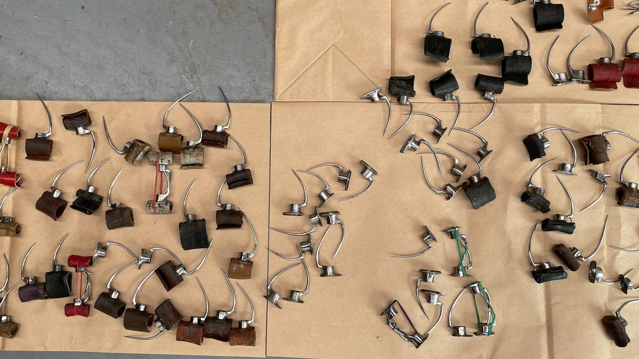 Metal spikes, spurs and other cockfighting paraphernalia were seized. Picture: NSW Police via NCA NewsWire