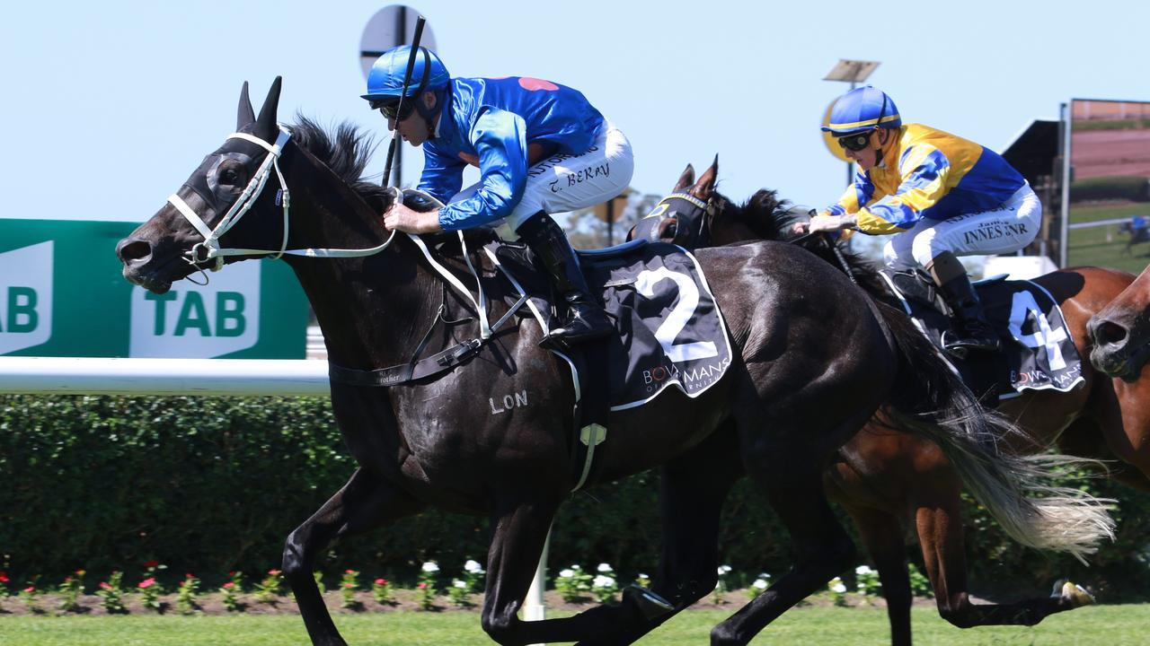 Criminal Code is a leading contender for Chris Waller at Randwick on Saturday. Picture: Grant Guy
