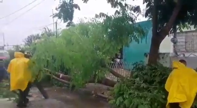 Workers Clear Damage From Deadly Tropical Storm Gamma in Yucatan, Mexico