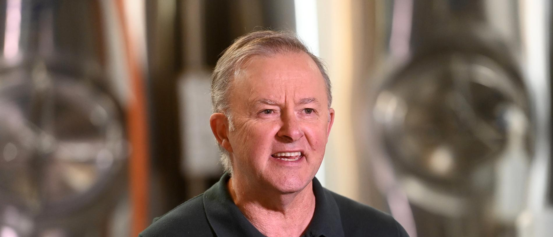 Federal Labor leader Anthony Albanese has backed in his MP. Picture: NCA NewsWire / Jeremy Piper