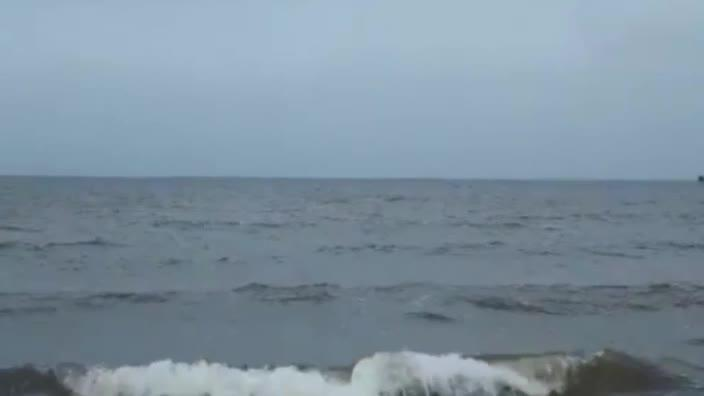 Is this the Loch Ness monster?