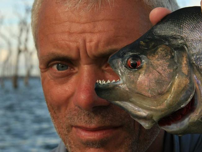 Piranhas have rows of razor sharp teeth. Pictured: Jeremy Wade with piranha in ABC show River Monsters.