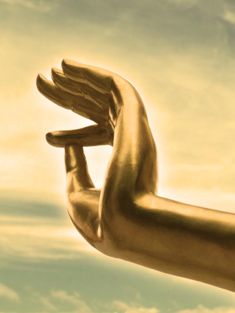 The traditional hand gesture for a meditating Buddha.