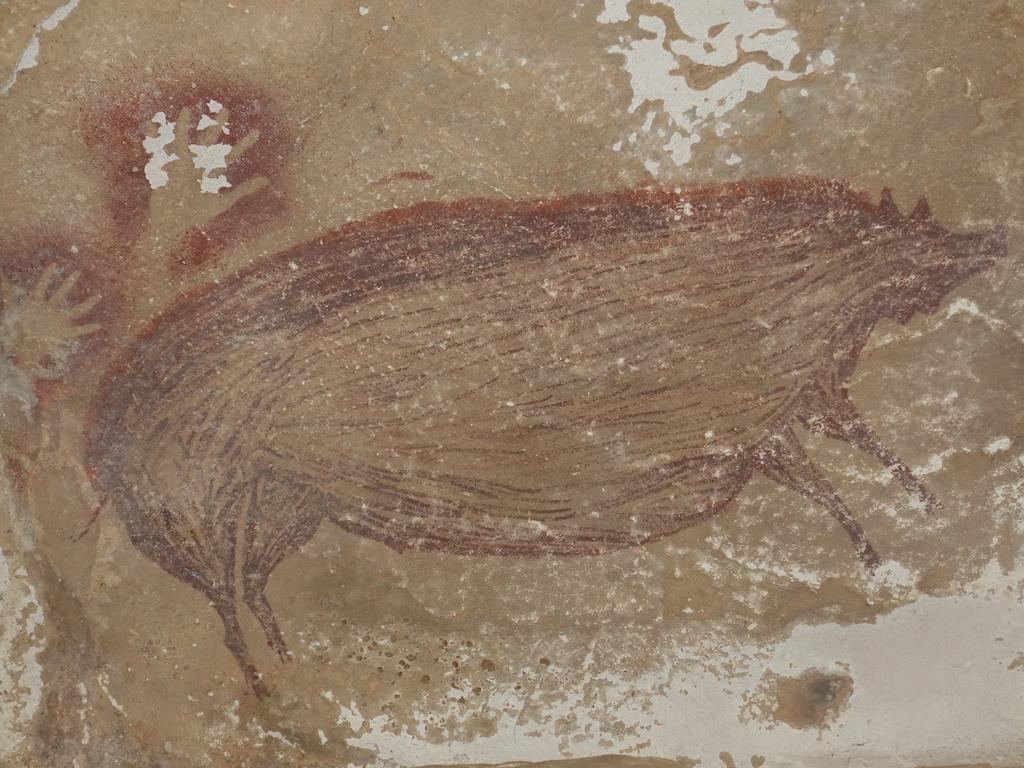 The wild pig painting discovered in Sulawesi. Picture: Maxime Aubert