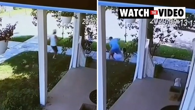 Hero dad saves daughter in vicious dog attack