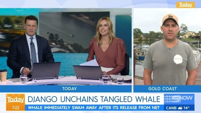 'Un-Australian': Karl Stefanovic lashes out as whale hero faces $27k fine (The Today Show)