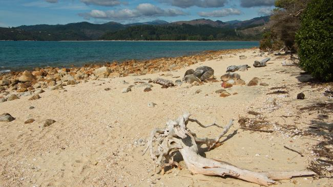 2/5NEW ZEALANDExperience New Zealand on foot with a four-day walking tour of the South Island from $949 a person. Depart from Nelson on the all-inclusive tour and visit Marahau, Torrent Bay, Awaroa Inlet, and more. Travel in select periods until April 2022. Bookings via Trip-a-Deal Picture: Supplied
