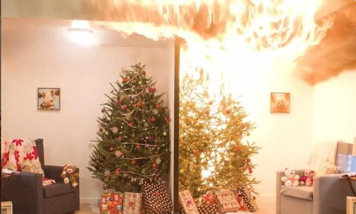 The mistake that causes disastrous Christmas tree fires
