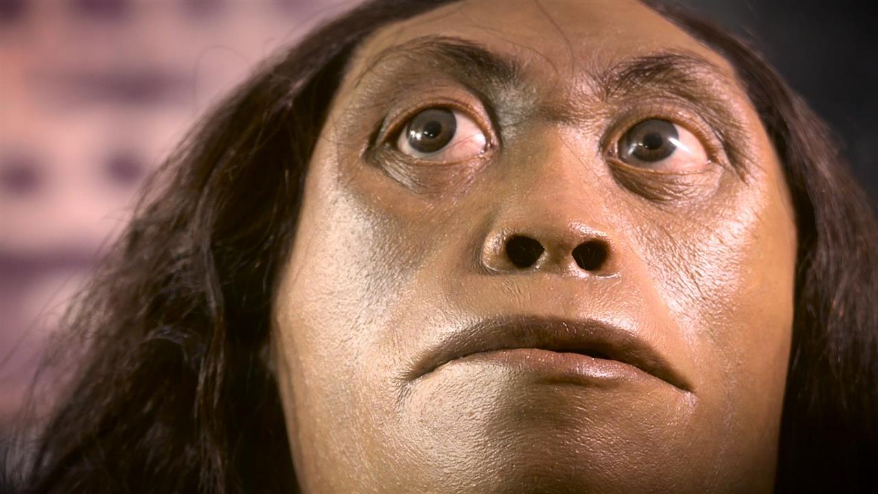 New Evidence Sheds Light on 'Hobbit' Demise