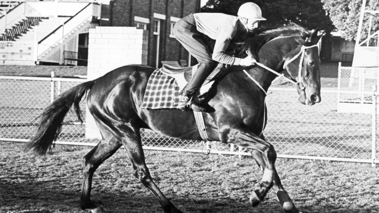 Jun 1976 file pic of racehorse Dalrello in action at Clifford Park Toowoomba with jockey Squain in the saddle. sport horseracing