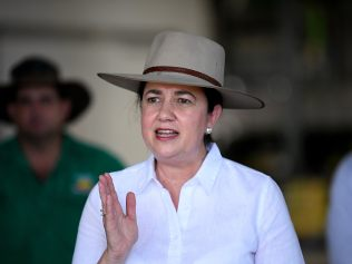Queensland Premier Annastacia Palaszczuk said a border decision would be made the day before the state election. Picture: NCA NewsWire / Dan Peled