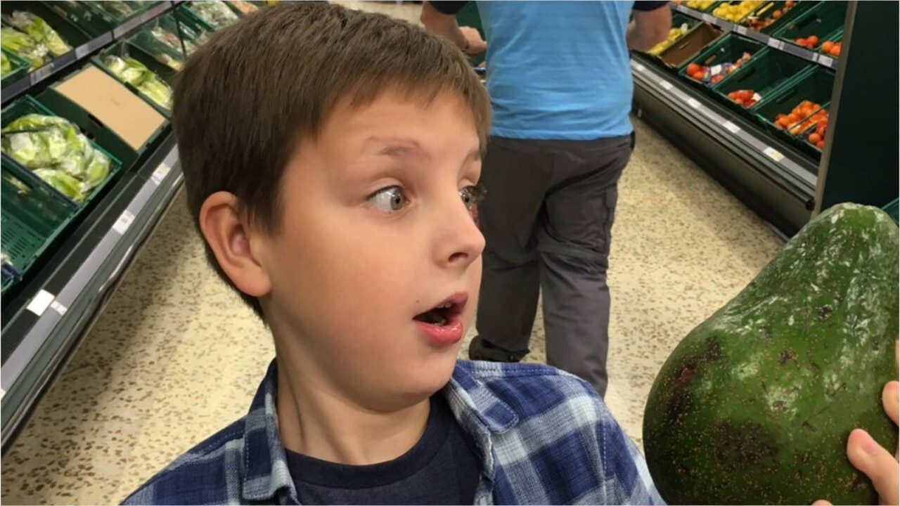 Giant avocados smashing the market