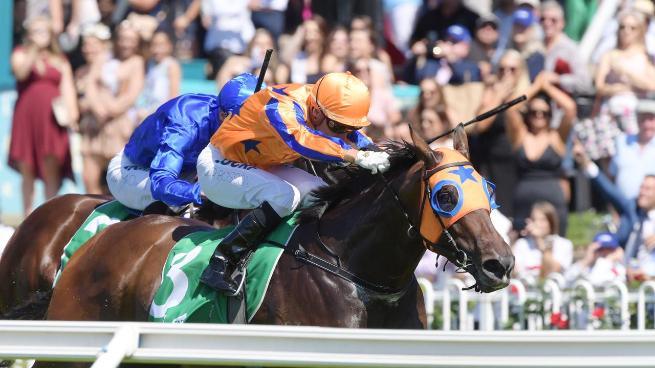 Avantage is likely to race against her classy stablemate Probabeel in Saturday's Group 3 Cockram Stakes at Caulfield. Picture: AAP