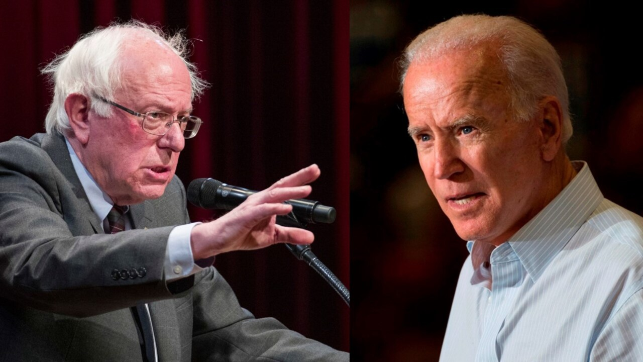 Joe Biden and Bernie Sanders 'can topple Trump' in 2020