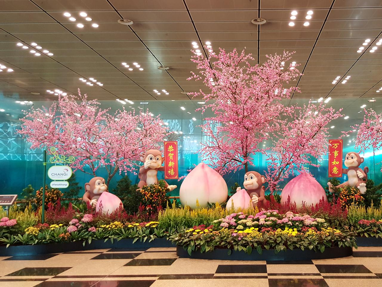 Singapore's Changi Airport features real plants and flowers blooming all year round.