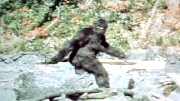 What's the deal with Bigfoot?